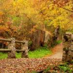 casas-rurales-sanabria-mirador-alrededores-parque-natural-6[1]